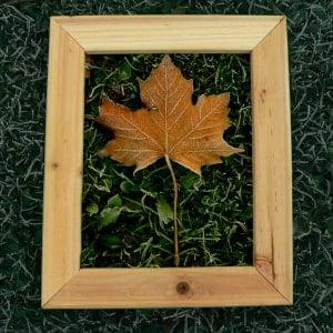 gift frame