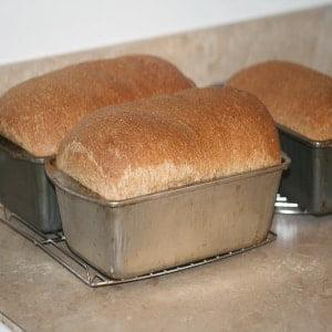 Gift homemade bread