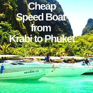 Cheap Speed Boat