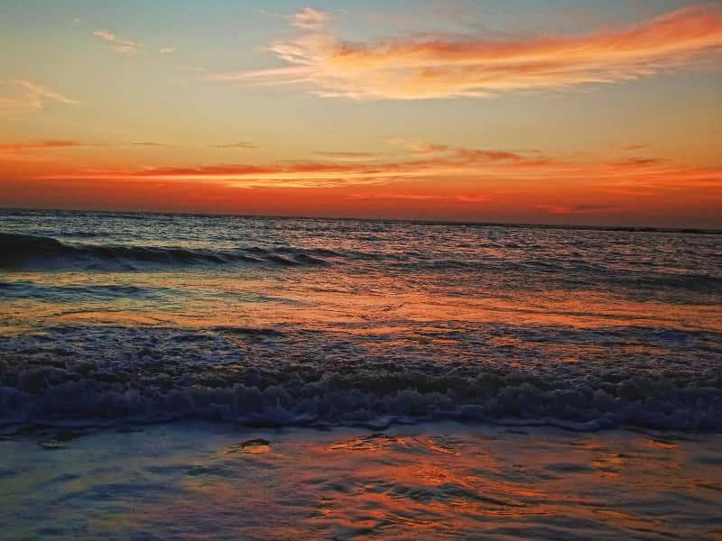 Hedvi Beach