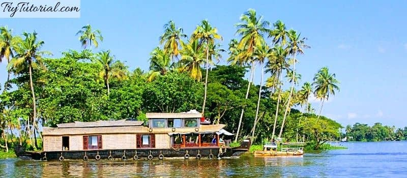 best things to do in Alleppey