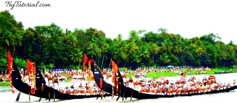 Snake Boat Festival Kerala