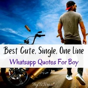 Best Cute, Single, One Line Whatsapp Quotes For Boys