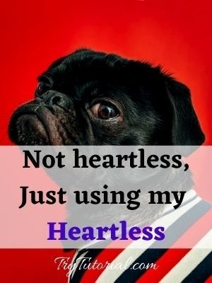 Heartless quote about me