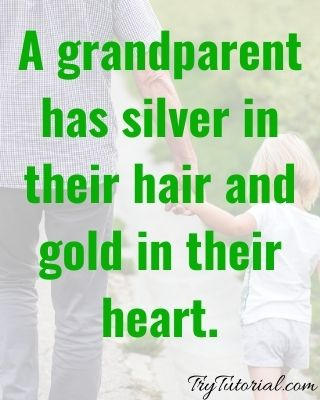 Best 50+ Grandparents Bond Quotes To Make You Smile [currentyear] 1
