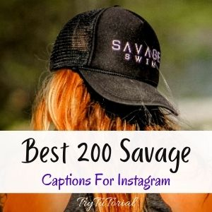 Best 200 Savage Captions For Instagram