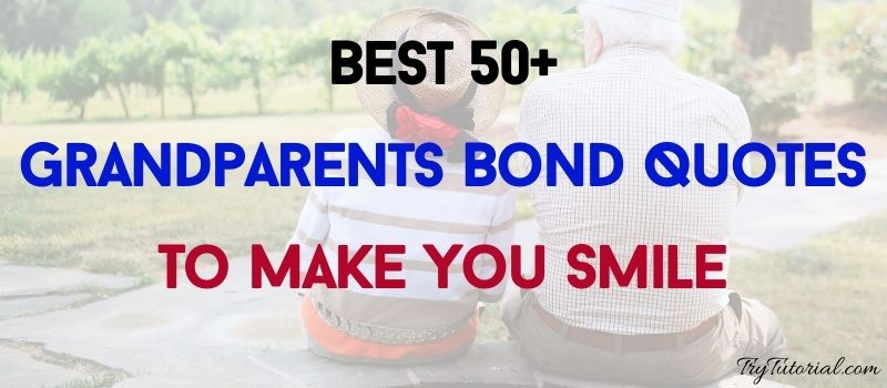 Best 50+ Grandparents Bond Quotes To Make You Smile