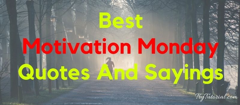 Best 150 Motivation Monday Quotes And Sayings
