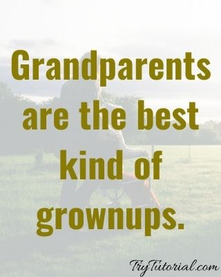 Best 50+ Grandparents Bond Quotes To Make You Smile [currentyear] 2