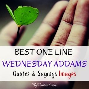 One Line Wednesday Addams Quotes & Sayings