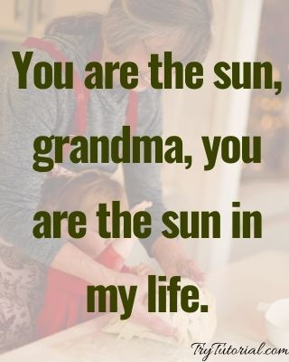 Best 120+ Grandmother Quotes and Sayings [currentyear] 8