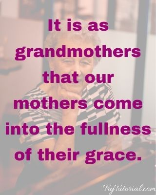 Best 120+ Grandmother Quotes and Sayings [currentyear] 2