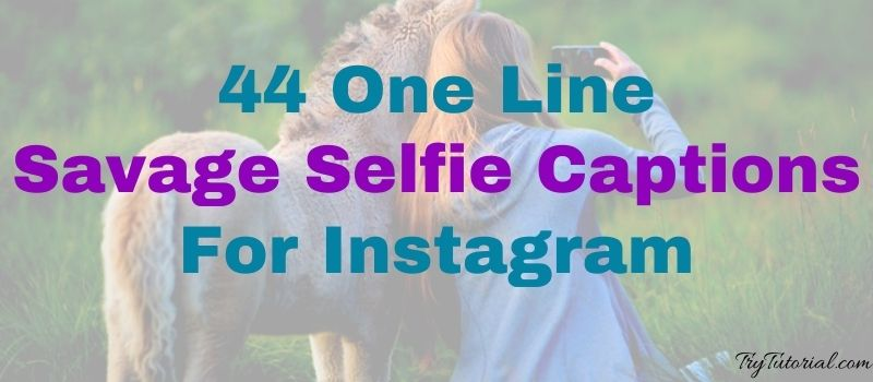 44 One Line Savage Selfie Captions For Instagram