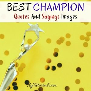 Champion Quotes And Sayings