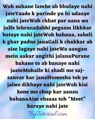 Cute Love Poem in Hindi For Him By a Girl