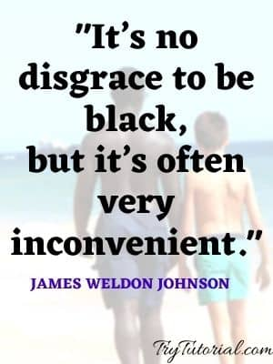 46 Powerful Racism Quotes On Race, Racial Injustice [currentyear] 1