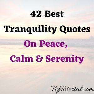 Tranquility Quotes On Peace, Calm & Serenity