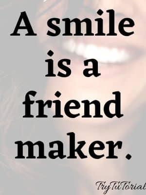 A smile is a friend maker.