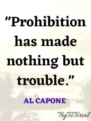 Al Capone Quotes On Prohibition
