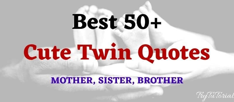 Best 50+ Cute Twin Quotes