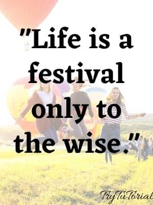 Life is a festival only to the wise.