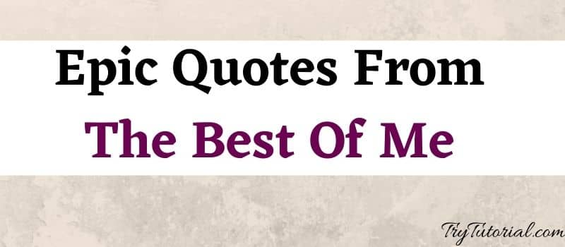 Quotes From The Best Of Me