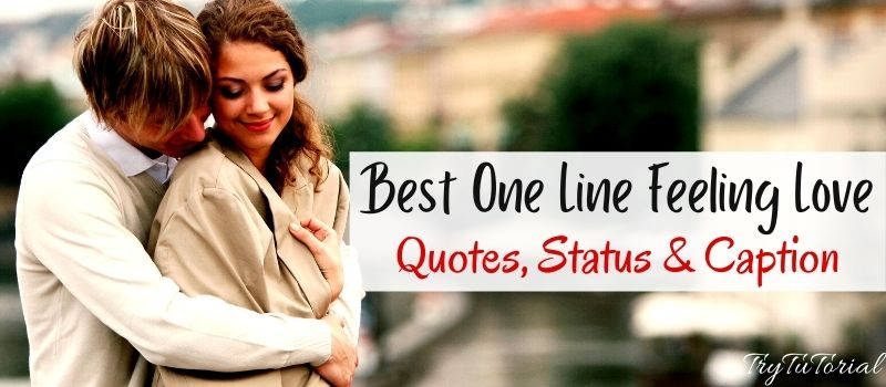 Best One Line Feeling Love Quotes, Status & Caption