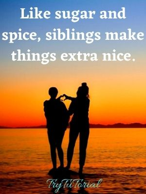 Best Sibling Quotes Funny For Instagram Pictures Caption