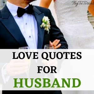Top 1000+ Romantic Love Quotes For Gf, Bf, Husband & Wife 3
