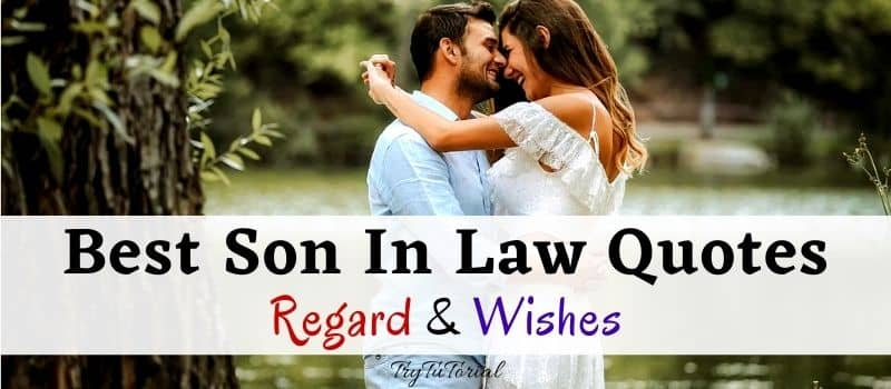Best Son In Law Quotes