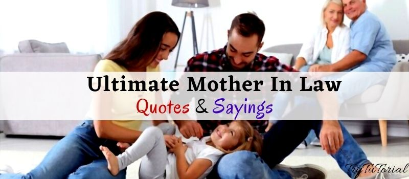 Best Mother In Law Quotes & Sayings