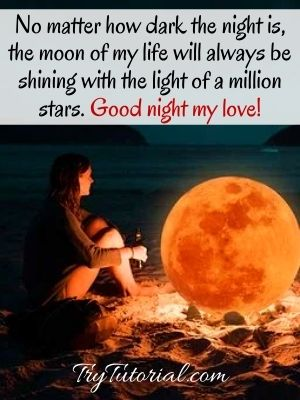 Best Good Night My Love Quotes