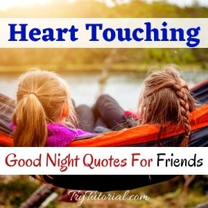 Heart Touching Good Night Quotes For Friends