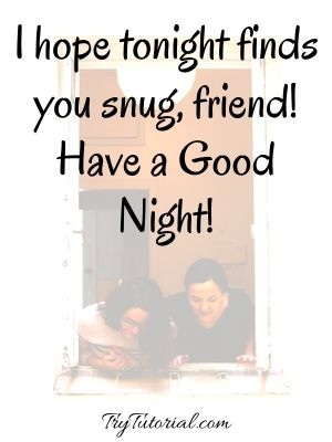 Short Good Night Quotes For Friends
