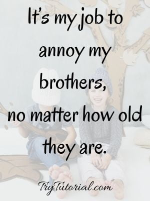 Annoy Sibling Captions
