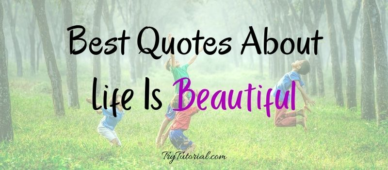 Awesome Quotes About Life Is Beautiful