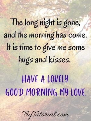 Have a lovely good morning my love