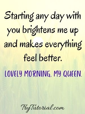 Lovely morning my queen