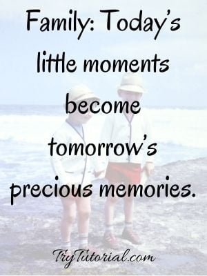 Memories Captions For Sibling