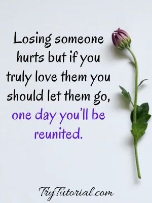 Sad Relationship Quotes For The Broken Hearted