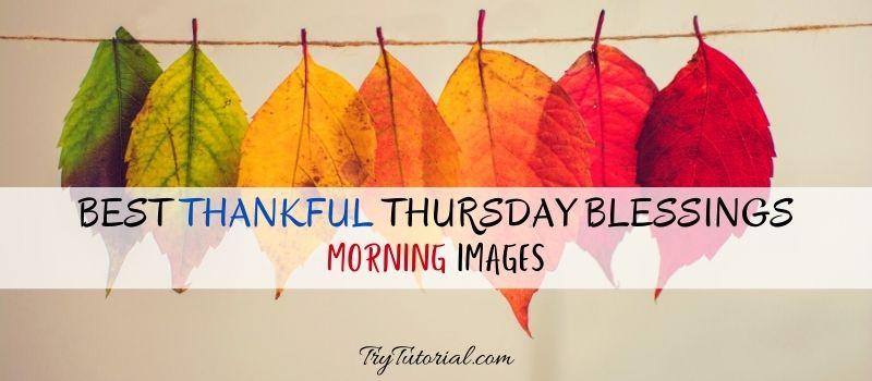 Best Thankful Thursday Blessings Morning