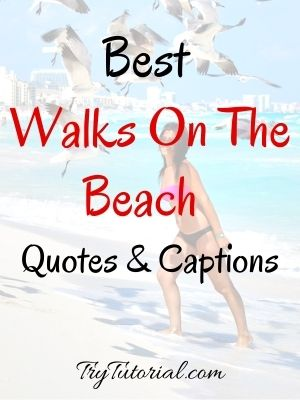 Best Walks On The Beach Quotes & Beach Captions