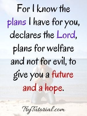 Bible Quotes About Hope For The Future