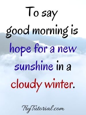 Good Morning Have A Blessed Day Quotes