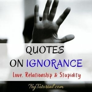Quotes On Ignorance Love, Relationship & Stupidity