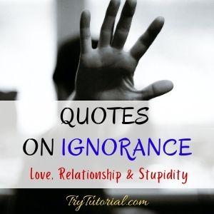 Quotes On Ignorance Love, Relationship & Stupidity