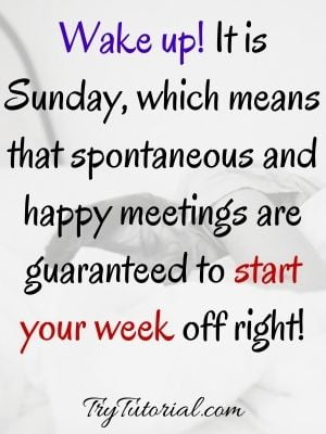 60 Beautiful Happy Sunday Quotes And Sayings: Blessings/Wishes [currentyear] 1