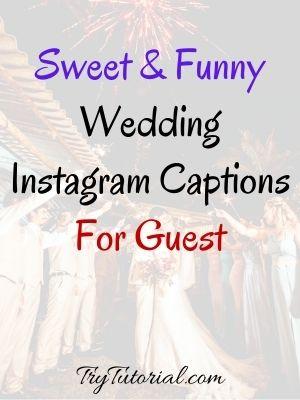 140+ Best Wedding Instagram Captions: Guest, Friends & Family Pics [currentyear] 1