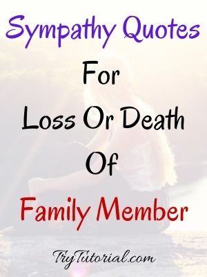 Sympathy Quotes For Loss Or Death Of Family Member