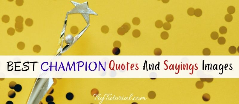 Best Champion Quotes And Sayings